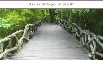 Building Biology – What is it?