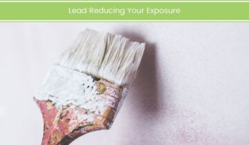 Lead Reducing Your Exposure