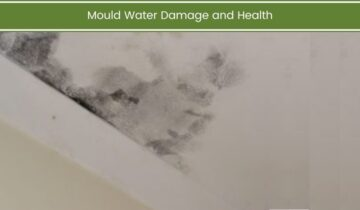 Mould Water Damage and Health
