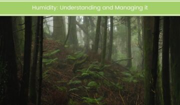 Humidity – Understanding and Managing it
