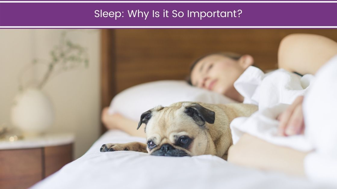 Sleep: Why Is it So Important?
