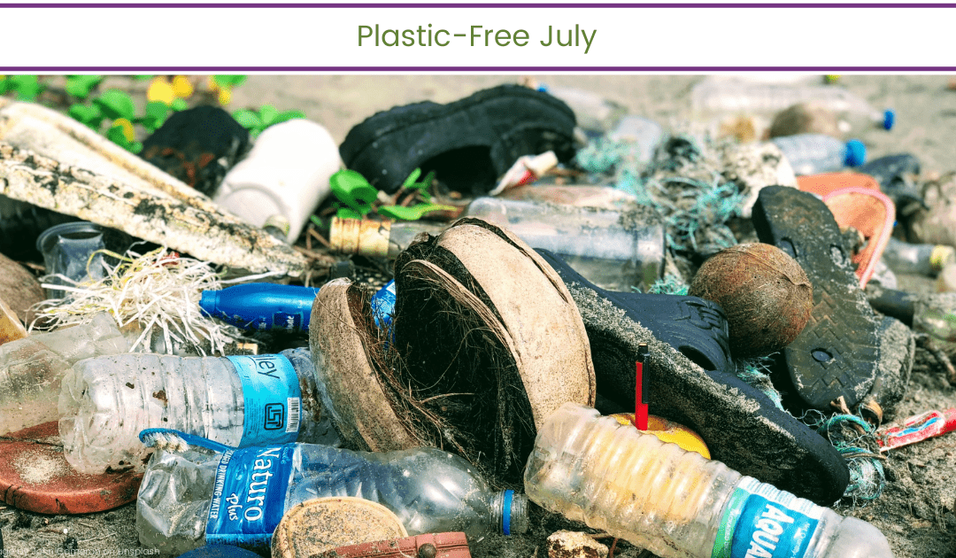 Plastic-Free July (and every month)